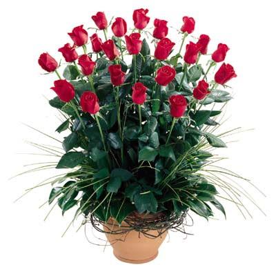 Şırnak hediye sevgilime hediye çiçek  10 adet kirmizi gül cam yada mika vazo