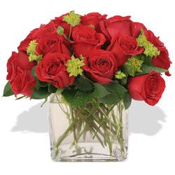 Şırnak ucuz çiçek gönder  10 adet kirmizi gül ve cam yada mika vazo