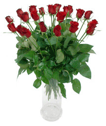 Şırnak ucuz çiçek gönder  11 adet kimizi gülün ihtisami cam yada mika vazo modeli