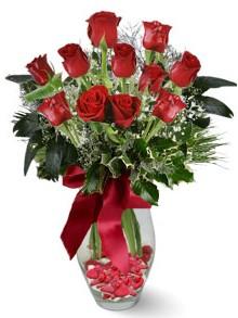 9 adet gül  Şırnak çiçek siparişi vermek  kirmizi gül