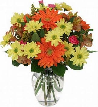 Şırnak çiçek mağazası , çiçekçi adresleri  vazo içerisinde karışık mevsim çiçekleri