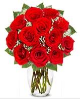 12 adet vazoda kıpkırmızı gül  Şırnak 14 şubat sevgililer günü çiçek