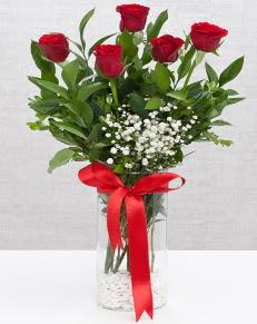 cam vazo içerisinde 5 adet kırmızı gül  Şırnak anneler günü çiçek yolla