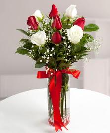 5 kırmızı 4 beyaz gül vazoda  Şırnak anneler günü çiçek yolla