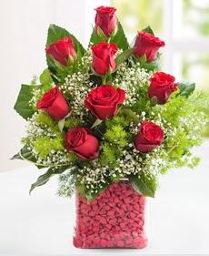 Cam içerisinde 9 adet kırmızı gül  Şırnak çiçek siparişi vermek