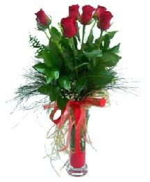 vazo içerisinde 5 kırmızı gül  Şırnak çiçek yolla , çiçek gönder , çiçekçi