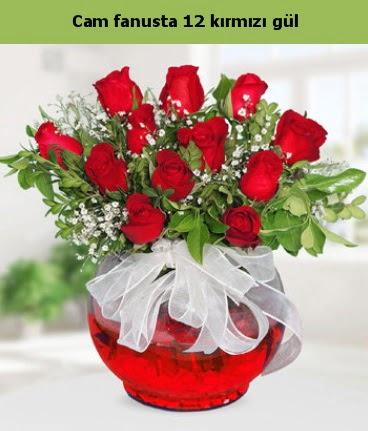Cam içerisinde 12 adet kırmızı gül  Şırnak çiçek siparişi vermek