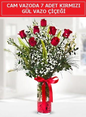 Cam vazoda 7 adet kırmızı gül çiçeği  Şırnak çiçekçi telefonları