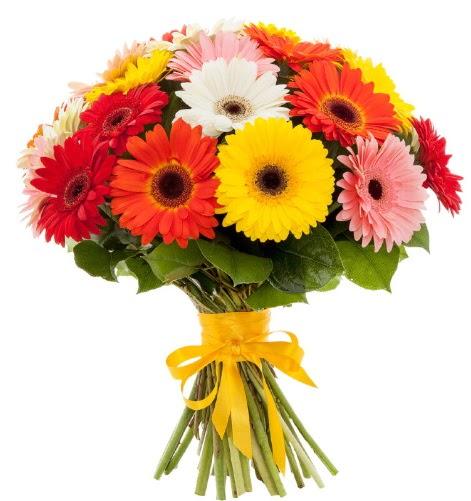 Gerbera demeti buketi  Şırnak hediye çiçek yolla