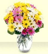 Şırnak cicek , cicekci  mevsim çiçekleri mika yada cam vazo