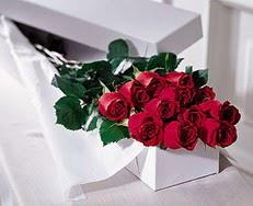 Şırnak hediye çiçek yolla  özel kutuda 12 adet gül