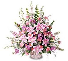 Şırnak internetten çiçek siparişi  Tanzim mevsim çiçeklerinden çiçek modeli