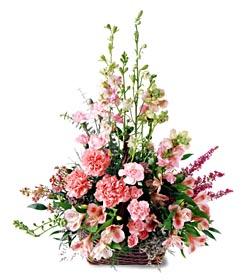 Şırnak çiçek siparişi sitesi  mevsim çiçeklerinden özel