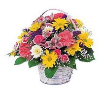 Şırnak çiçekçi mağazası  mevsim çiçekleri sepeti özel