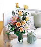 Şırnak çiçekçi mağazası  cam yada mika vazo içerisinde gül kazablanka