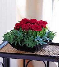 Şırnak internetten çiçek siparişi  10 adet kare mika yada cam vazoda gül tanzim