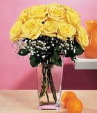 Şırnak çiçek siparişi vermek  9 adet sari güllerden cam yada mika vazo