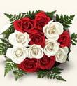 Şırnak çiçekçi mağazası  10 adet kirmizi beyaz güller - anneler günü için ideal seçimdir -