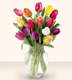 Şırnak online çiçek gönderme sipariş  13 adet cam yada mika vazoda laleler