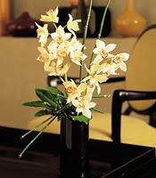 Şırnak online çiçek gönderme sipariş  cam yada mika vazo içerisinde dal orkide