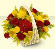 Şırnak çiçek online çiçek siparişi  sepette mevsim çiçekleri