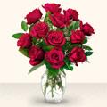 Şırnak çiçek satışı  10 adet gül cam yada mika vazo da
