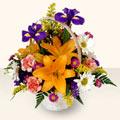 Şırnak çiçek online çiçek siparişi  sepet içinde karisik çiçekler