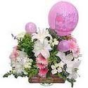 balon ve çiçeklerle tanzim  Şırnak çiçek siparişi vermek