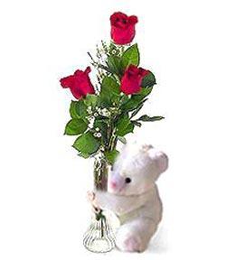oyuncak ve 3 adet gül  Şırnak internetten çiçek siparişi