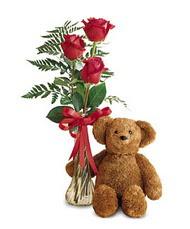 oyuncak ve güller tanzim   Şırnak ucuz çiçek gönder