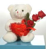3 adetgül ve oyuncak   Şırnak çiçek gönderme sitemiz güvenlidir