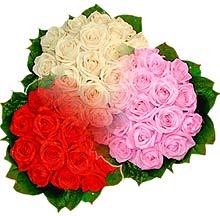3 renkte gül seven sever   Şırnak çiçekçi mağazası