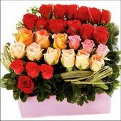 15 adet renkli gül ve cam   Şırnak çiçekçiler