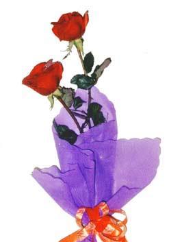 2  adet kirmizi gül buketi   Şırnak çiçekçi mağazası
