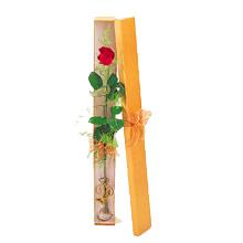 ince  kutuda  1  gül   Şırnak çiçek satışı