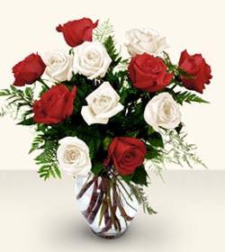 Şırnak hediye sevgilime hediye çiçek  6 adet kirmizi 6 adet beyaz gül cam içerisinde