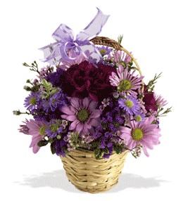 Şırnak hediye sevgilime hediye çiçek  sepet içerisinde krizantem çiçekleri