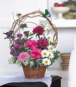 Şırnak anneler günü çiçek yolla  sepet içerisinde karanfil gerbera ve kir çiçekleri