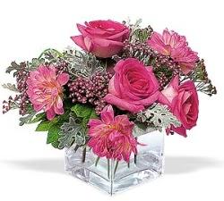 Şırnak anneler günü çiçek yolla  cam içerisinde 5 gül 7 gerbera çiçegi