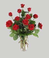 Şırnak anneler günü çiçek yolla  11 adet kirmizi gül vazo halinde