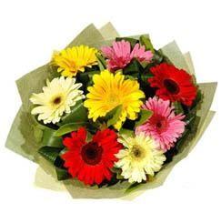 9 adet karisik gerbera demeti  Şırnak yurtiçi ve yurtdışı çiçek siparişi
