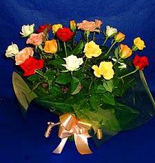 Şırnak internetten çiçek satışı  13 adet karisik renkli güller
