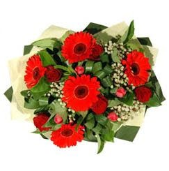 Şırnak çiçek siparişi sitesi   5 adet kirmizi gül 5 adet gerbera demeti