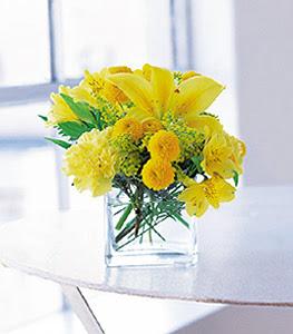 Şırnak çiçek siparişi sitesi  sarinin sihri cam içinde görsel sade çiçekler