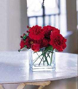 Şırnak çiçek siparişi sitesi  kirmizinin sihri cam içinde görsel sade çiçekler