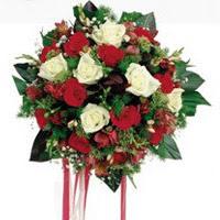 Şırnak çiçek siparişi sitesi  6 adet kirmizi 6 adet beyaz ve kir çiçekleri buket
