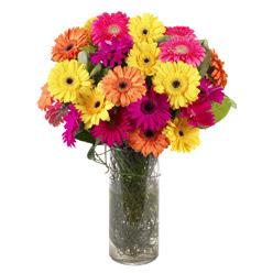 KARISIK GERBERALARDAN CAM VAZO TANZIMI  Şırnak çiçek yolla , çiçek gönder , çiçekçi