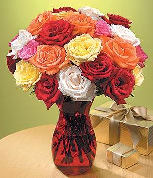 Şırnak çiçek servisi , çiçekçi adresleri  13 adet renkli gül