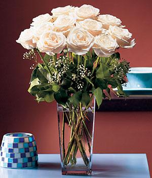 Şırnak çiçek mağazası , çiçekçi adresleri  Cam yada mika vazo içerisinde 12 gül