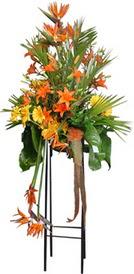 Şırnak internetten çiçek siparişi  perförje tanzimi dügün nikah ve açilislara